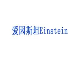 爱因斯坦 EINSTEIN