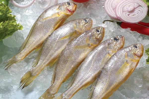 湖南临澧黄花鱼获地理标志证明商标