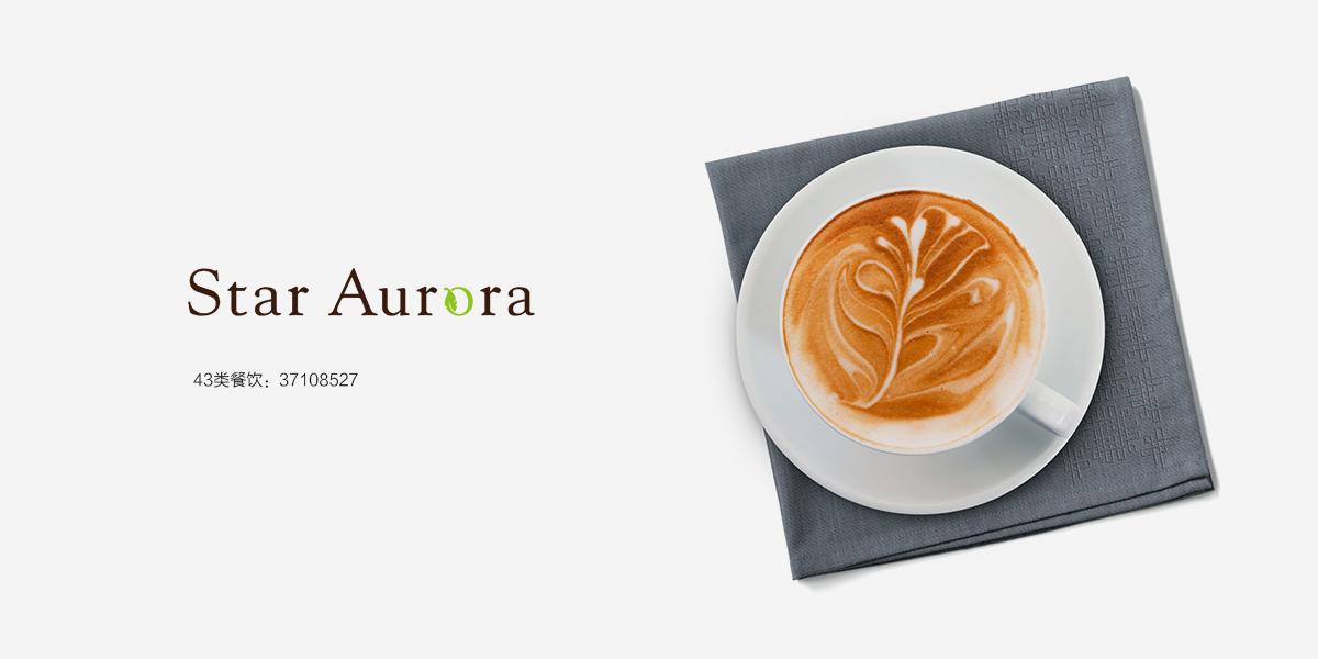 STAR AURORA商标设计稿